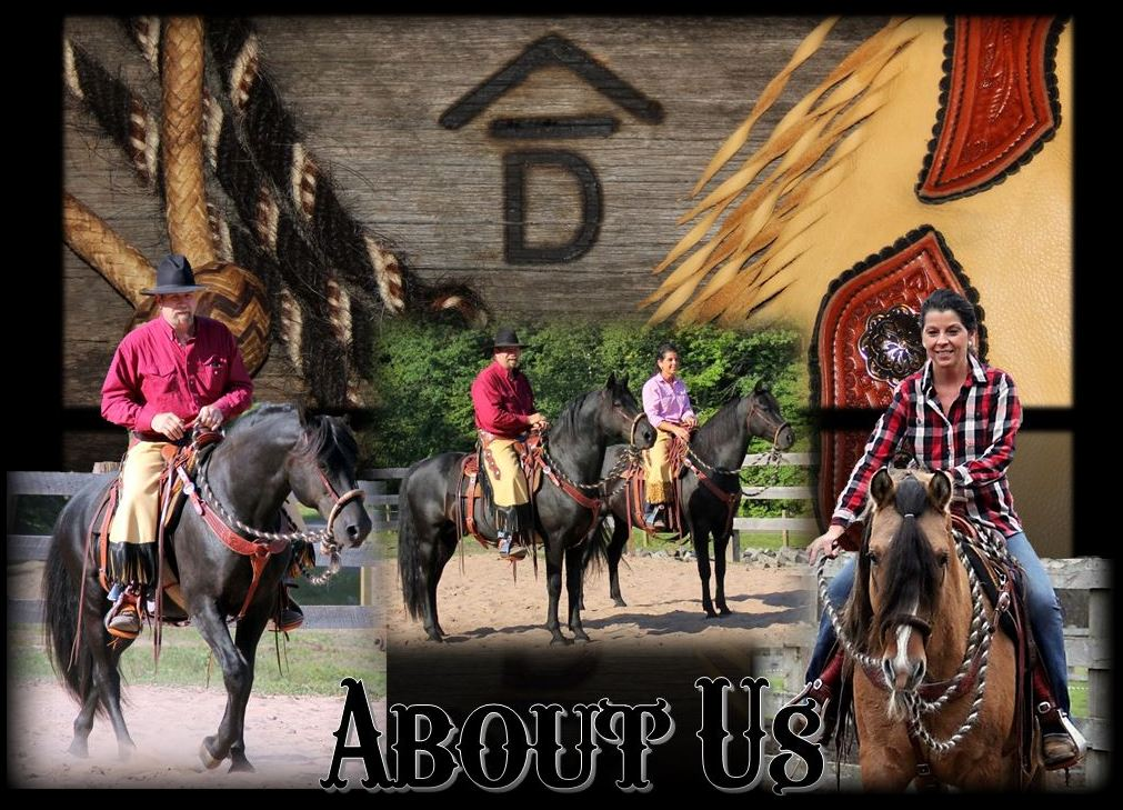About Us2 (2)