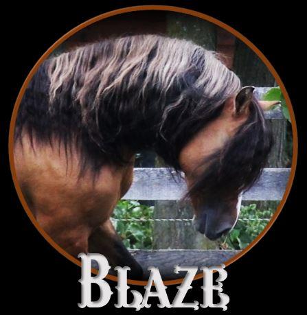 Blaze head1