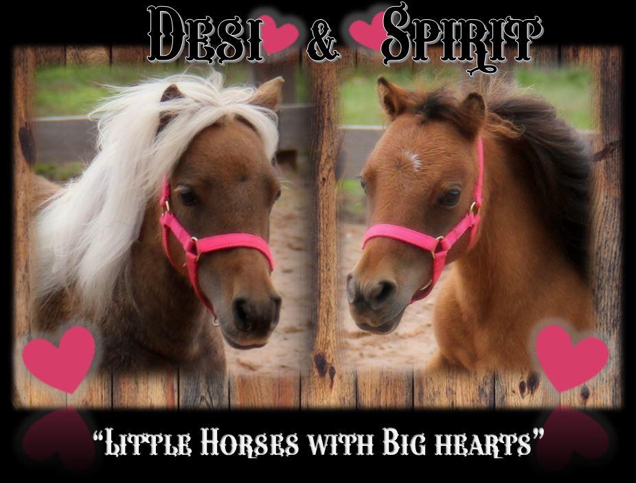 Desi & Spirit header