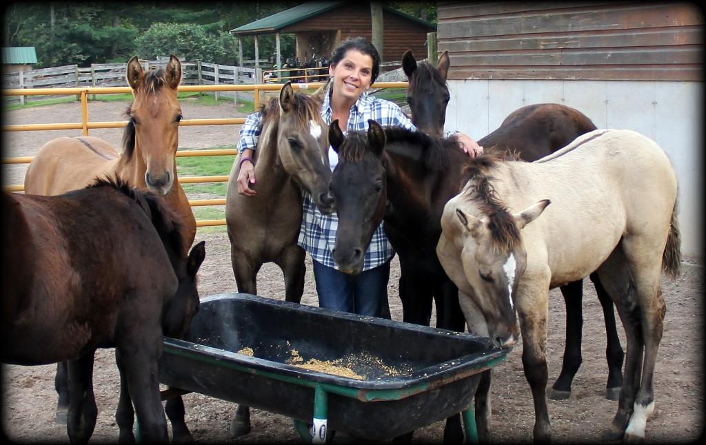 Foals 17 4.jpg1