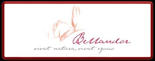 Logo link Bellandor