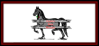 Logo link Country Rose