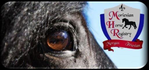 Logo link Moriesian Horse Registry