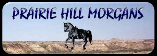 Logo link Prairie Hill1