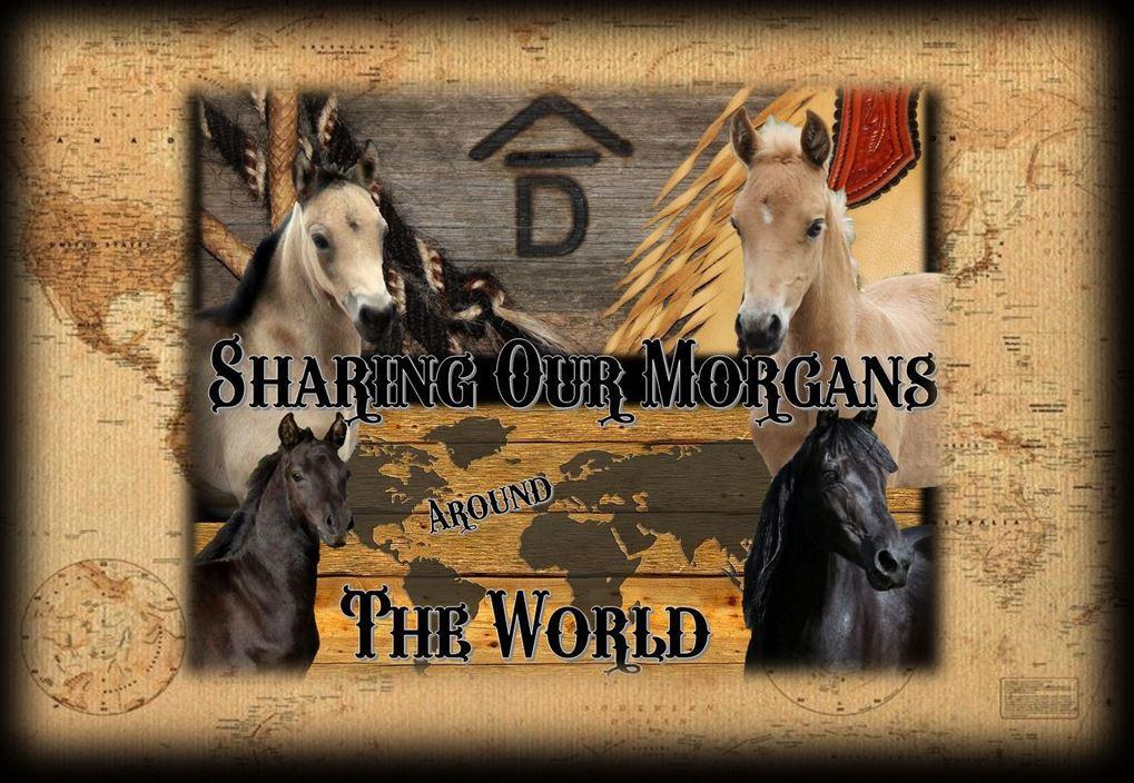 Page header Sharing Morgans