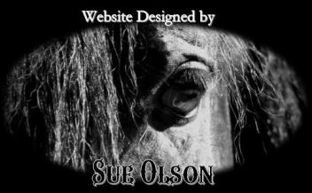 Web design by Sue1
