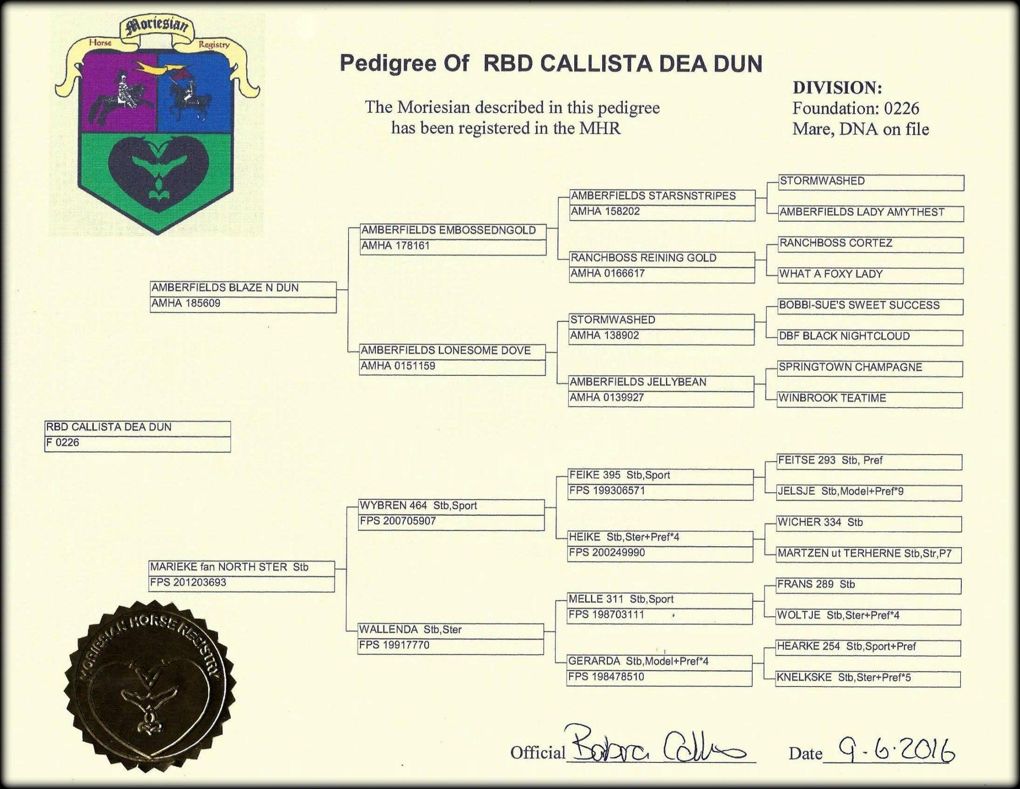 Moriesian Registration Callista.jpg1
