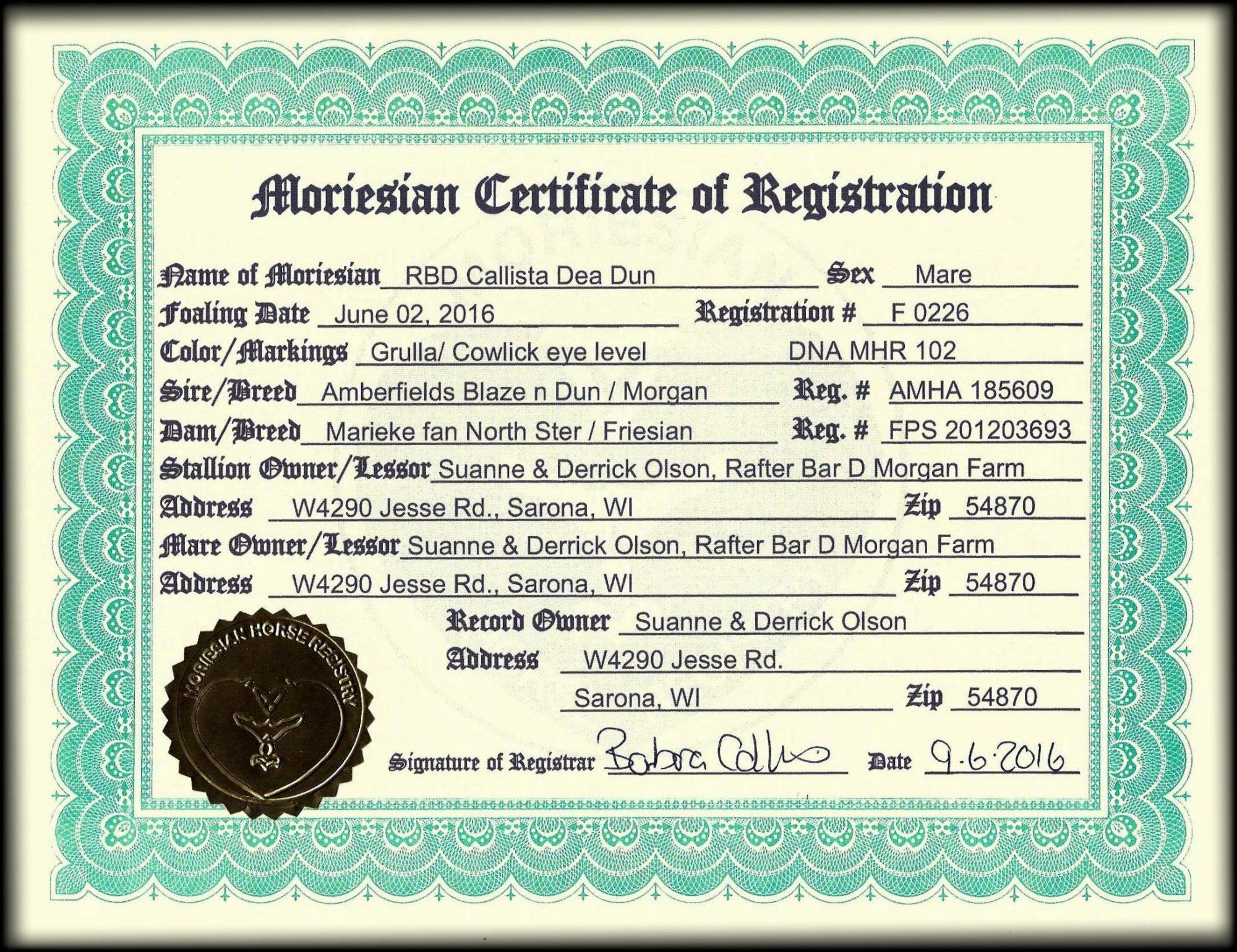 Moriesian Registration Callista2.jpg1