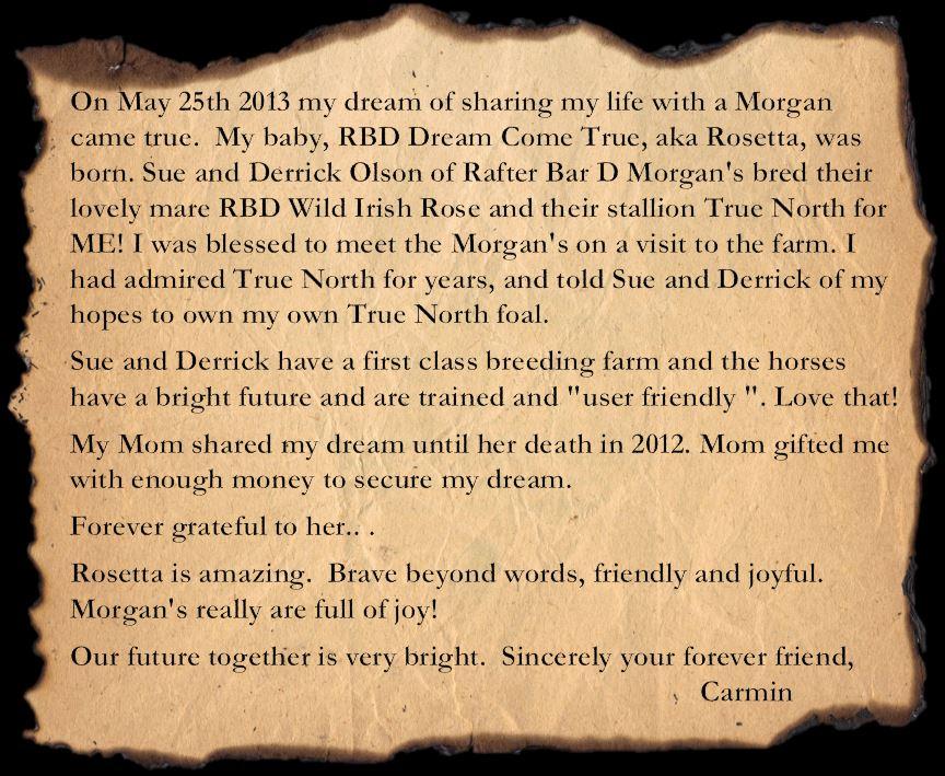 Testimonial Carmin1