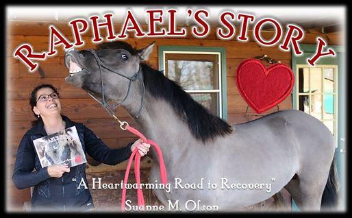Raphael's story1